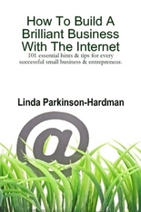 how to build a brilliant business with the internet - book cover