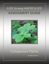 DIY Ginseng Assessment Guide