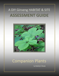 DIY Ginseng Assessment Guide