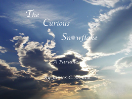 the curious snowflake